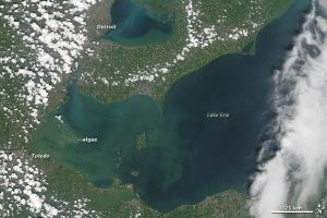 An algae bloom covers a huge section of Lake Erie. Photo courtesy of NASA.