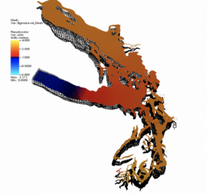 Image from the Salish Sea Model. Courtesy of the Pacific Northwest National Lab, the Washington State Department of Ecology and U.S. Environmental Protection Agency.