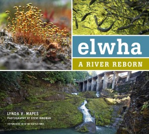 "Book cover for ""Elwha: A River Reborn"" by Lynda Mapes. The Burke Museum exhibit runs from November 23, 2013 to March 9, 2014."