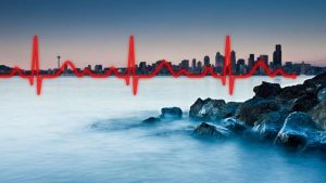 Implementation strategies are a framework to improve the heartbeat of Puget Sound