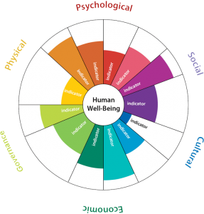 human wellbeing indicator wheel