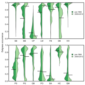 Fig. 1. Site-scale changes in eelgrass area at herring spawning sites in Puget Sound. This project supports the analysis of these patterns in the San Juan Islands. From Shelton et al. 2017.