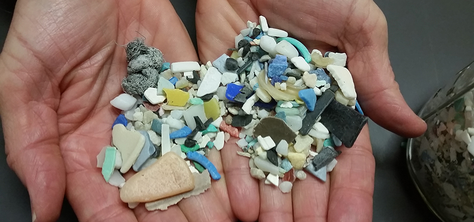 Plastic debris gathered from the ocean. Photo courtesy of NOAA.
