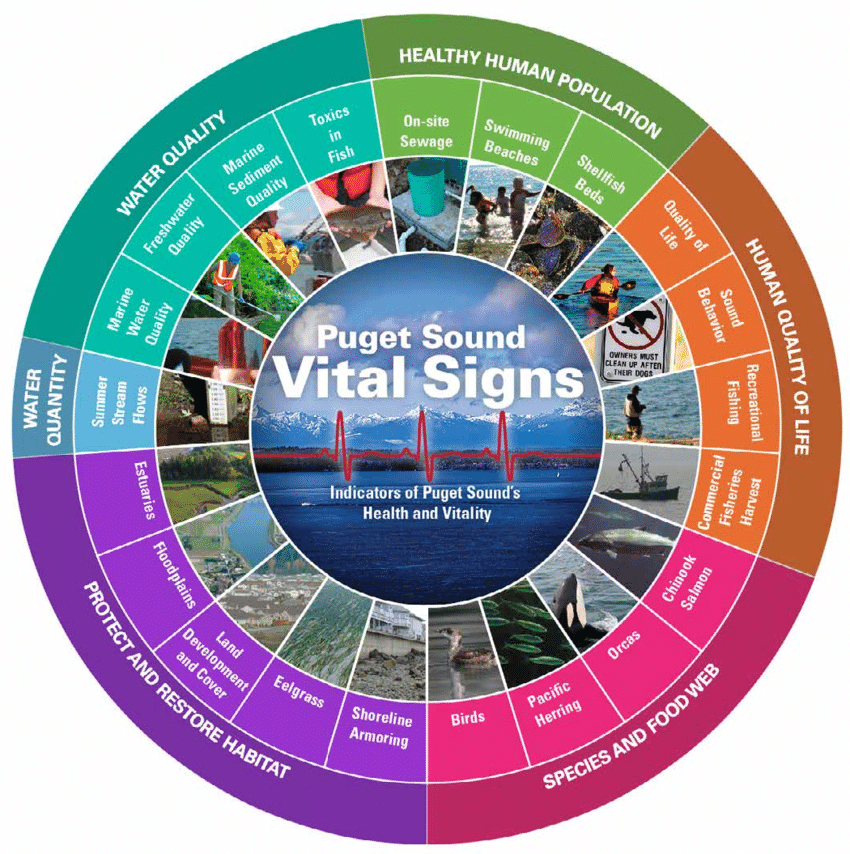 The Puget Sound Vital Sign wheel from the Puget Sound Partnership.