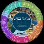 Puget Sound Vital Signs wheel