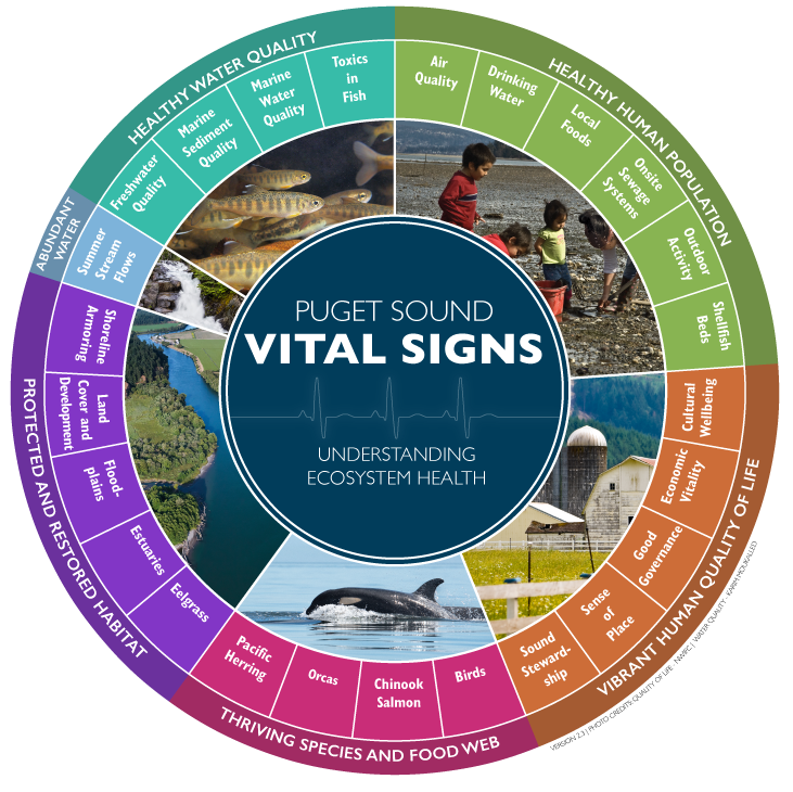 Puget Sound Vital Signs wheel