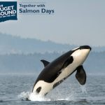 Puget Sound 'Day on the Hill' promotional image courtesy of the Puget Sound Partnership