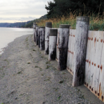 A bulkhead along the shores of Puget Sound. Photo by Christopher Dunagan.