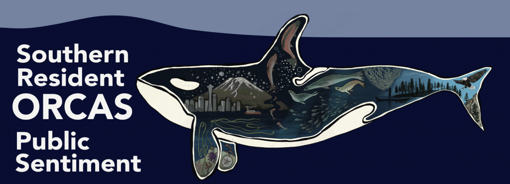 Orca report cover