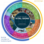 The current Vital Signs wheel. Image courtesy of the Puget Sound Partnership.
