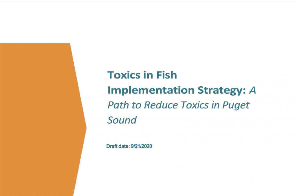 Toxics in Fish report cover.