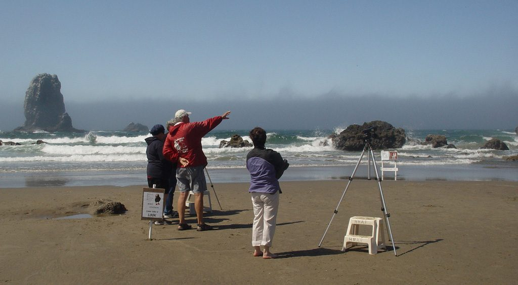 Visitors hoping to see puffins at Haystack Rock, Cannon Beach, Oregon. Photo: U.S. Fish and Wildlife Service (CC BY-NC 2.0)